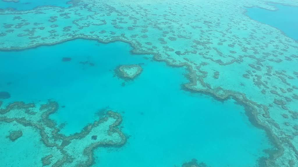 grande barrière de corail parmi les plus beaux endroits du monde