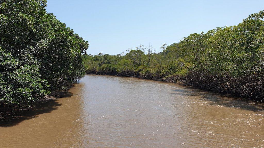 delta des ameriques Parnaiba