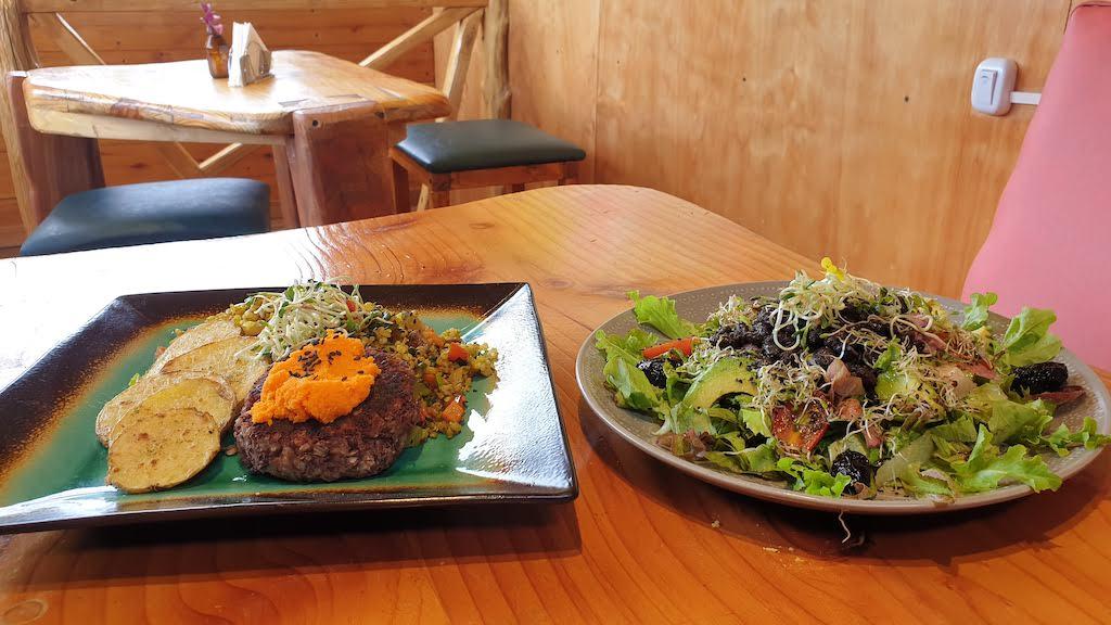 repas vegan en patagonie argentine pour allier écologie et tour du monde